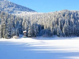 Тур в Закарпатье на Старый новы год